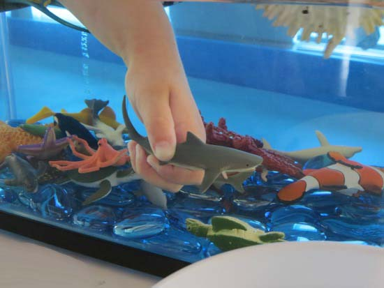 How-to-make-a-pretend-play-underwater-zoo-aquarium