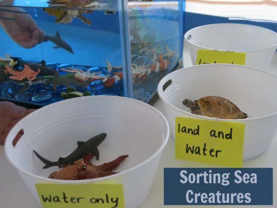 Sorting-Sea-Creatures-Underwater-Zoo